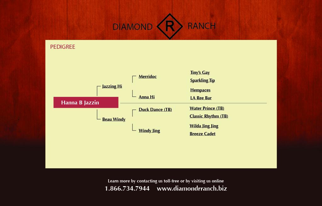 Hanna B Jazzin - Pedigree